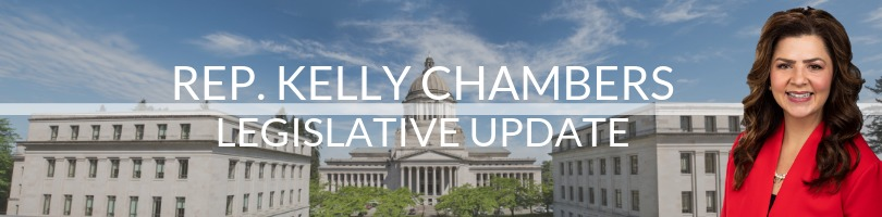 Rep. Kelly Chambers Legislative Update